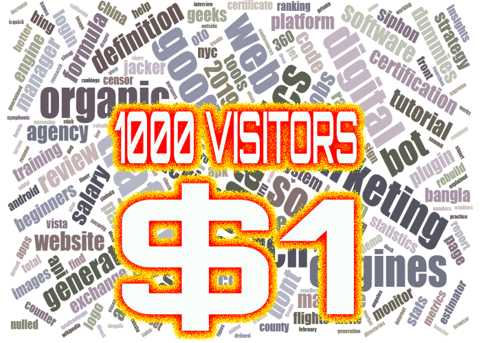 1000 web visitors $1